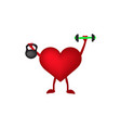 heart with dumbbells and weight in hands vector image