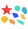 seashell starfish set vector image vector image