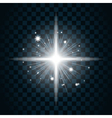 Shine star sparkle icon 20a vector image vector image