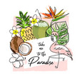 tropical summer background with cute cartoon items vector image vector image