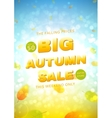 Big autumn sale flyer vector image vector image