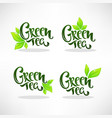 glossy and shine green herbal tea leaves vector image