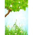 Green Grass and Tree Branch vector image vector image