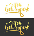Phrase You look superb Calligraphy Gift handmade vector image