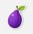 purple plum with stem and leaf vector image vector image