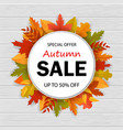 sale special offer in autumn season 3d autumn vector image vector image