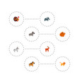 set of animal icons flat style symbols with turkey vector image