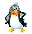 A penguin vector image