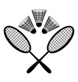 equipment badminton vector image