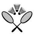 equipment badminton vector image