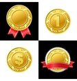 Gold Coin Medal Icon vector image vector image