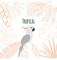 hand drawn sketch flat doodle exotic tropical vector image vector image