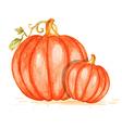 Watercolor orange pumpkins vector image vector image