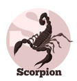 abc cartoon scorpion vector image