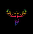 colorful birds design on a black background wild vector image