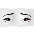 eyes hand drawn female luxury eye with vector image