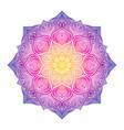 floral circular ornament vector image