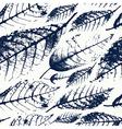 Foliage herbarium seamless pattern vector image vector image