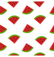 fruit watermelon pattern on white backgroun vector image vector image