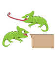 lizard eating insect in flat style vector image vector image