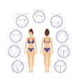Plastic Surgery Woman Body Infographics vector image