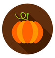 pumpkin circle icon vector image vector image