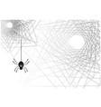 spider web halloween vector image