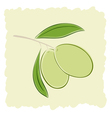 Two green olives vector image vector image