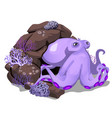 cartoon purple octopus hiding in the rock grotto vector image