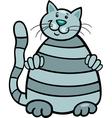 cute tabby cat vector image vector image