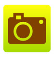 digital camera sign brown icon at green vector image