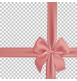 realistic pink bow and ribbon isolated vector image vector image