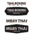 thai boxing with muay thai action on flat big vector image vector image