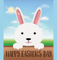 white bunny on a wood board with happy easter day vector image