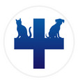 veterinary cross with dog and cat vector image