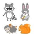 Cute Animal Squrrel Hedgehog Racconn Hare vector image vector image