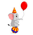 cute circus elephant with a striped ball vector image vector image