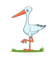 happy cartoon stork vector image vector image