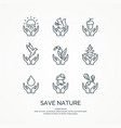 save nature set linear forest icons vector image vector image