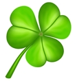 Three leaf clover vector image vector image