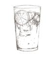 tropical cocktail sketch icon vector image