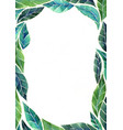 abstract tropical green leaves border watercolor vector image vector image