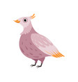 beautiful pink bird on a white vector image vector image