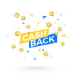 cashback banner concept cashback text and falling vector image