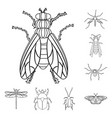 insect and fly symbol vector image vector image