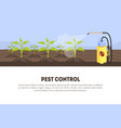 pest control banner template with spray vector image vector image