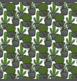 cactus seamless pattern vector image