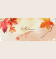 abstract art autumn background with orange maple vector image