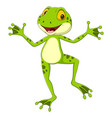 cartoon funny frog posing on white background vector image vector image