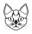 cat 21 MW vector image